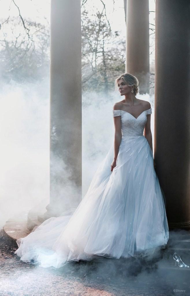 Cinderella inspired wedding gown