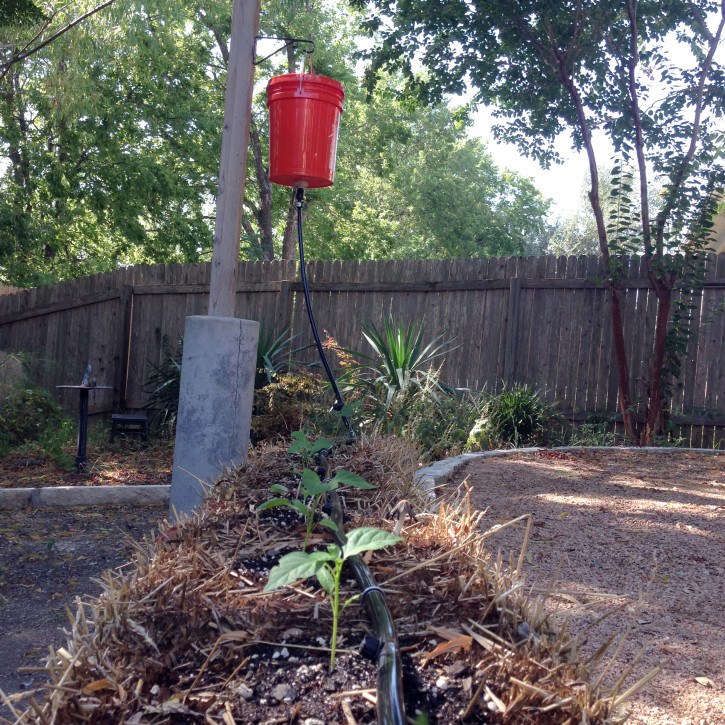 photo of gravity drip irrigation setup in a straw bale garden