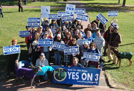 Volunteers at Yes on 3 Rally