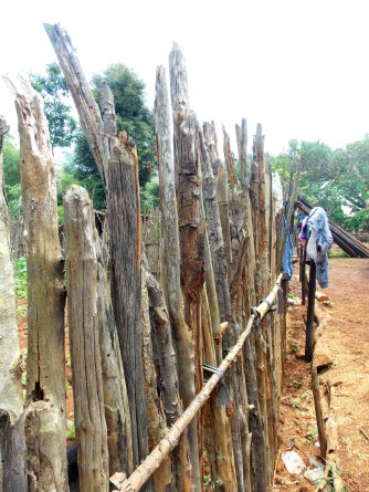 Typical wooden fence
