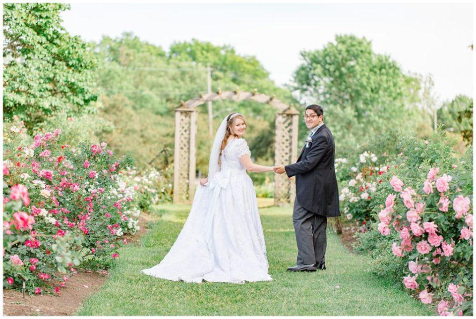 Rose Garden at the Ornament Garden Ottawa - Bride and Groom Portraits -  Ottawa - Wedding Day - Grey Loft Studio - Wedding Photographer - Wedding Photographer near me