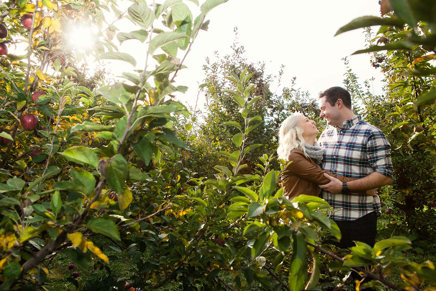 Apple Orchard Engagement Photography Minnesota