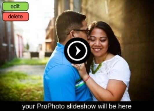 Engagement Photographers, Chicago, Midwest, Milwaukee, Madison, Minneapolis, Wedding Photographers, Documentary Wedding Photographers, Photojournalist Wedding Photographers