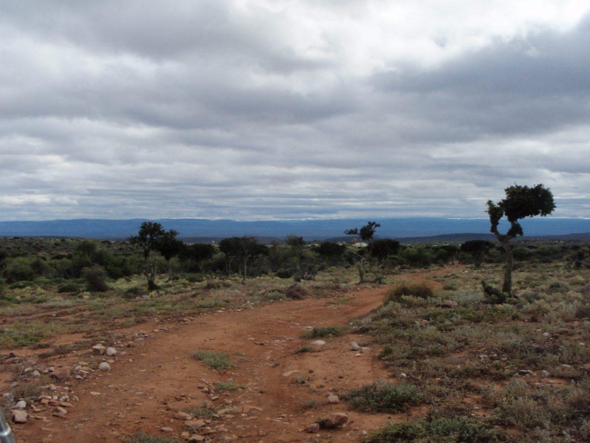 Ausgewandert nach Südafrika (2. Folge) – Ein neues Zuhause