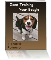 Zone Beagle training