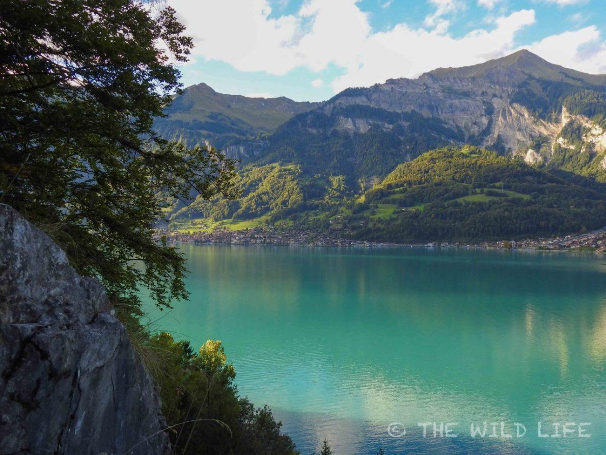 Brienzsee, Switzerland