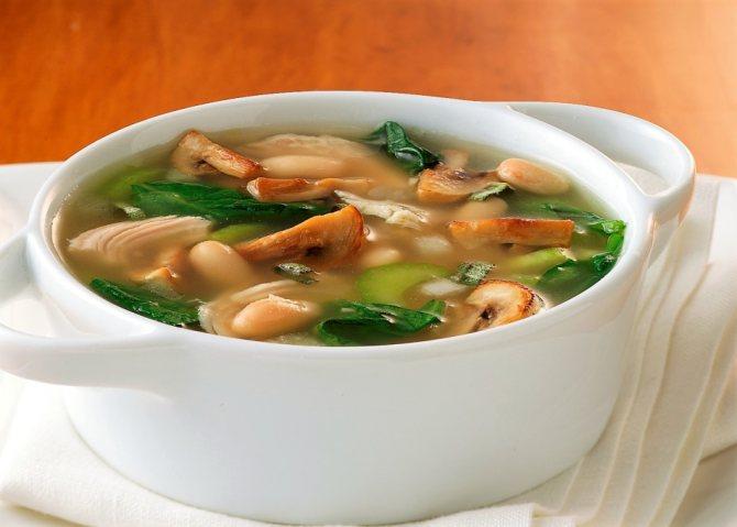Гриб Зеленушка: фото и описание, как готовить, приготовление на зиму