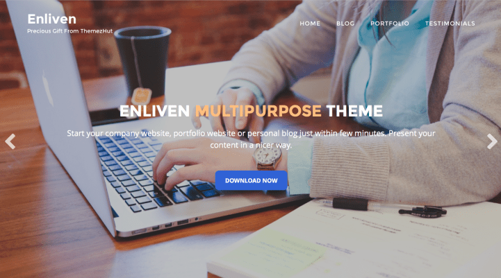 Enliven WordPress Theme Screenshot