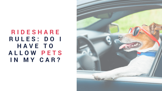 Rideshare Rules Do I HAVE To Allow Pets In My Car