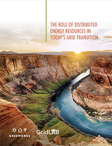 THE ROLE OF DISTRIBUTED ENERGY RESOURCES IN TODAY'S GRID TRANSITION