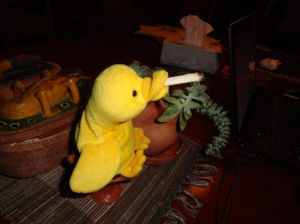 I told Little Duck smoking would stunt his growth, but he never listens to me.