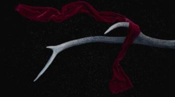 Hirschgeweih mit rotem Tuch