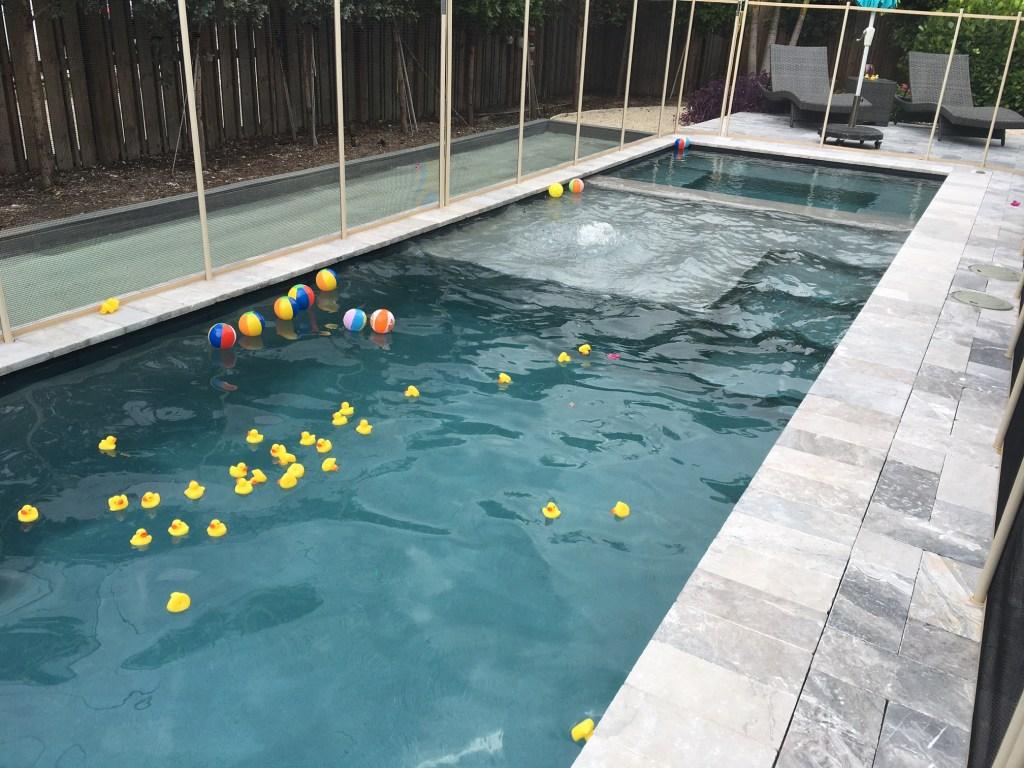rubber ducks in pool