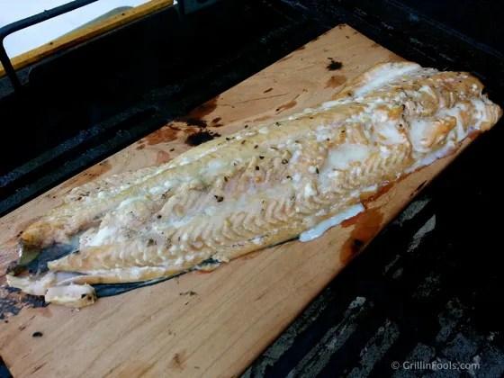 Cherry Plank Salmon 11