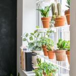 Diy Floating Window Plant Shelf Tutorial Grillo Designs