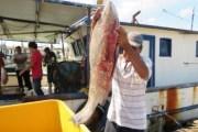 Créditos de SEFOET a pescadores y artesanos, en la veda del mero