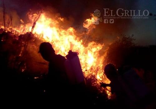 Brigadistas apagan un incendio en montes de Motul que amenazó con quemar una quebradora