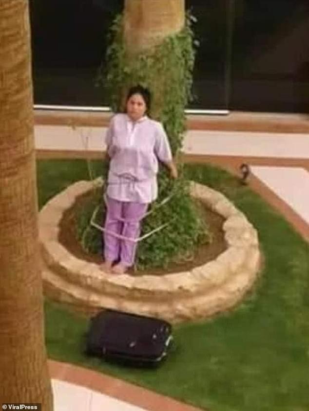 Atan a una empleada a un árbol por haber dejado un mueble bajo el sol
