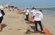 Limpian la basura de las playas de Chelem, Chuburná, Chicxulub y Progreso