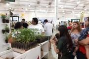Más de 46 empresas y 200 meridanos se unen a la Cruzada Forestal 2019