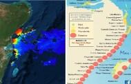 Una invasión masiva de sargazo afecta a seis playas de Quintana Roo