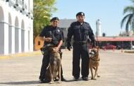Inicia el Operativo de Seguridad por temporada vacacional, en Progreso