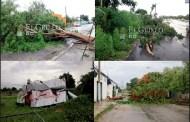 Fuerte turbonada derriba árboles, cables y una bodega: El Oriente fue el más afectado