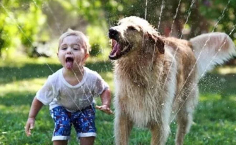 Tener un perro mejora la salud y el desarrollo de los niños