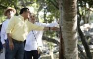 La Comuna de Mérida y el INAH trabajan en el rescate arqueológico del parque de Xoclán