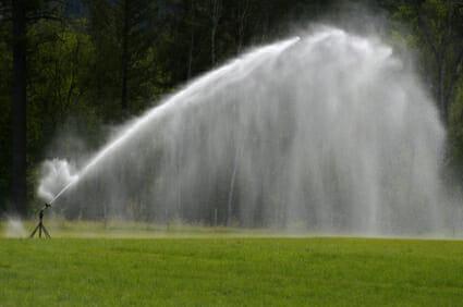 Sprinkler, Grass, Watering, Irrigation