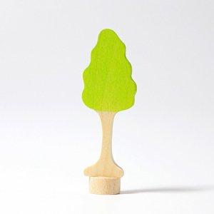 Drzewo Brzoza