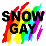 Logo Snowgay