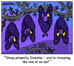 Sleeping Bats Cartoon