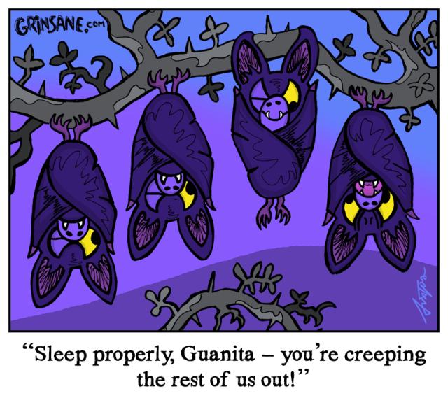 Sleeping Bats Cartoon