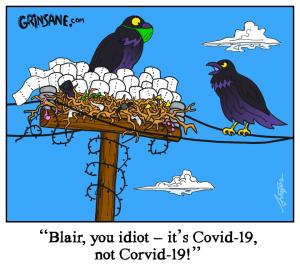 Corvid 19 Comic