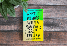 what it means when a man falls from the sky lesley nneka arimah