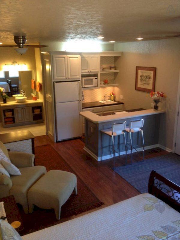 elegant basement apartment