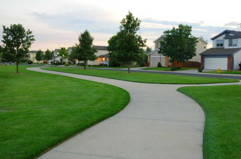lawn driveway edging design