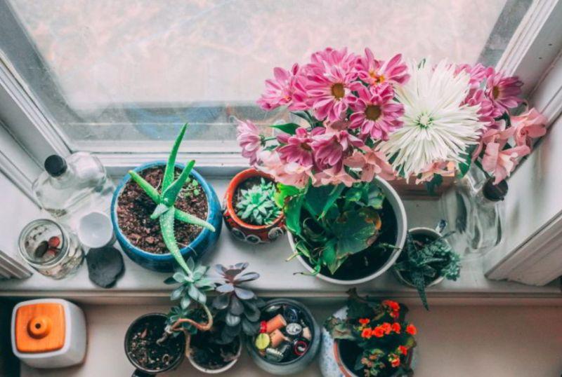 Indoor Kitchen Garden Ideas