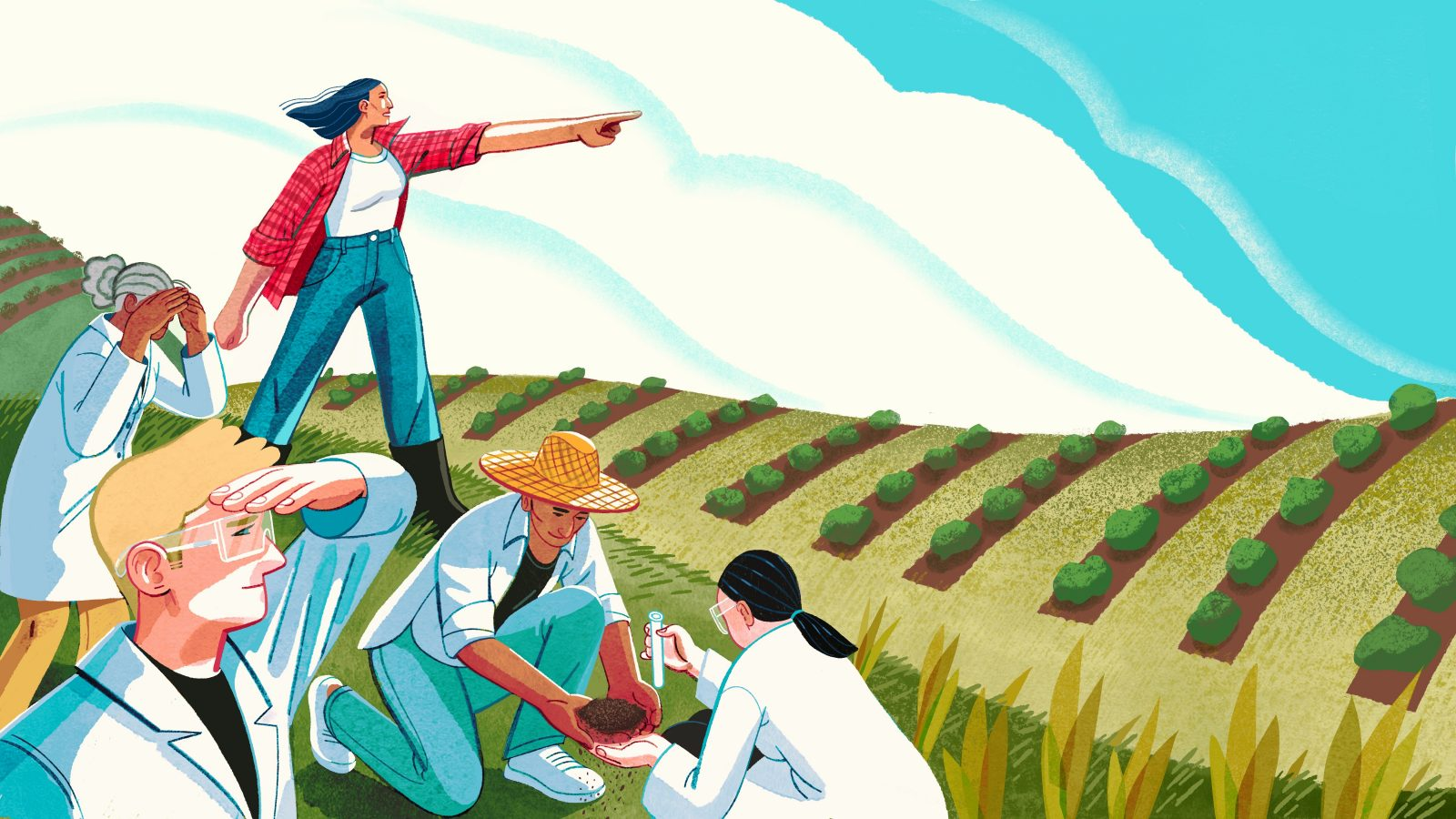 Illustration of researchers and farmers