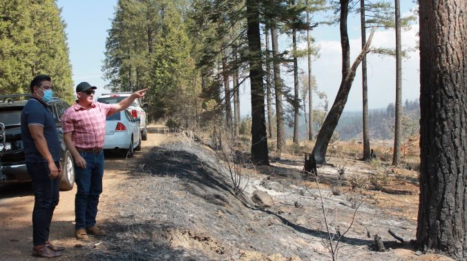 Ricardo Lara and Mark Egbert look over a shaded fuel break where firefighters were able to stop the Caldor Fire.
