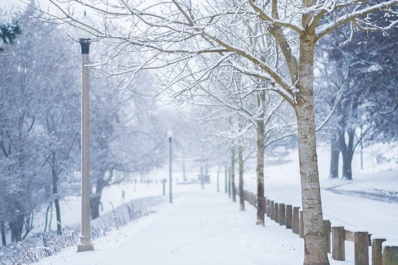 Tacoma_snow_11
