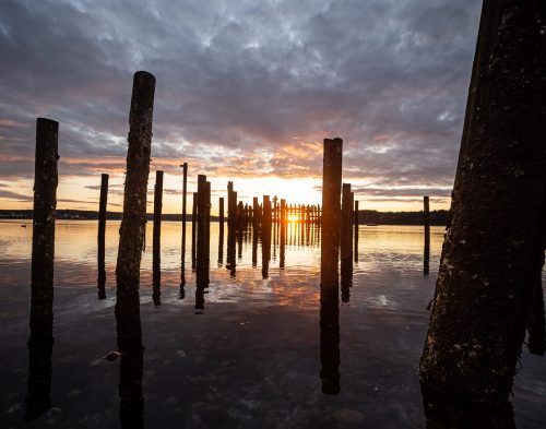 Titlow Pilings at Sunset