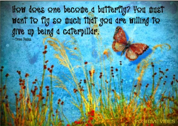 Motivation Butterfly