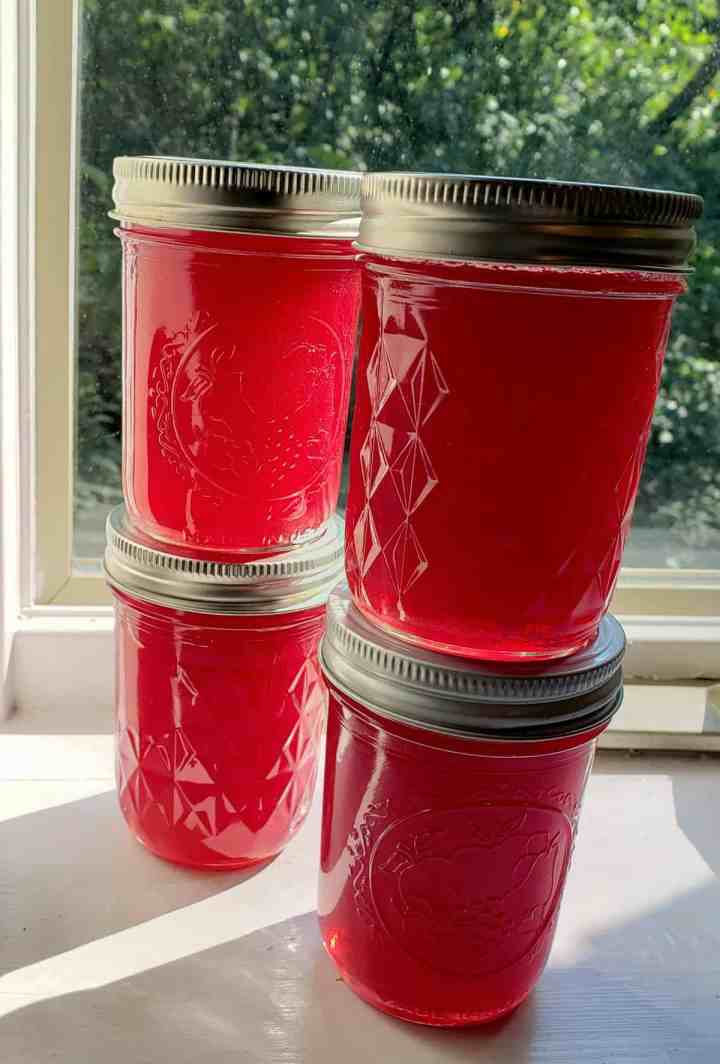 4 jars of muscadine jelly stacked in a window