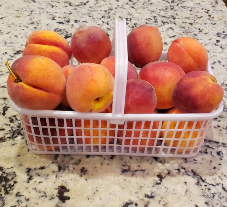 A white basket of peaches ready for cobbler making!