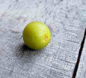 one scuppernong grape on a wooden surface