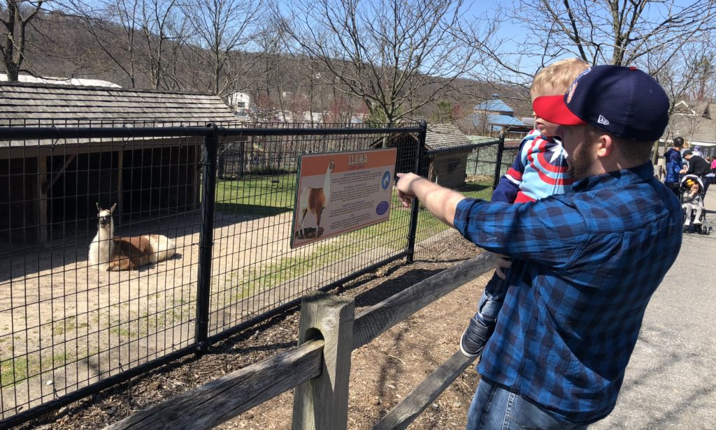 Turtle Back Zoo - Grits in the City - Lifestyle Blogger - Family Blogger