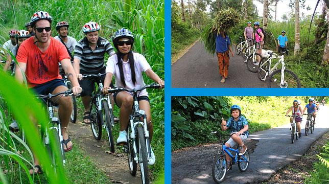 bali_taro_adventure_cycling_3