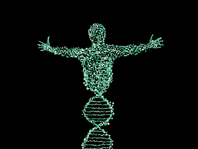 person made of dna